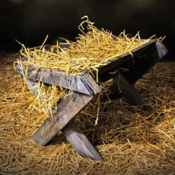 The Temple in the Manger - A Christmas letter