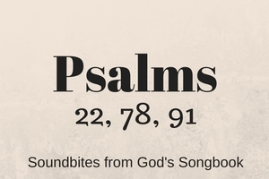 Psalms: Soundbites from God's Songbook